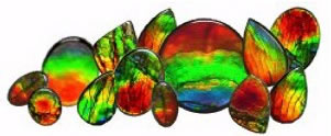 Visions of Gold is your custom Jewelery specialist for Ammolite
